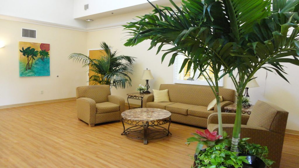 palm-beaches-facilities-01